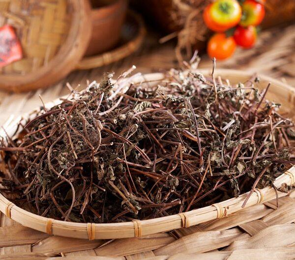 野草茶系列
